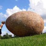 noahs-egg1-150x150 Yumurta Yapılar :)