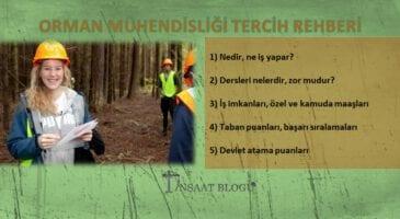 orman mühendisliği maaşları, iş imkanları, taban puanları ve başarı sıralamaları