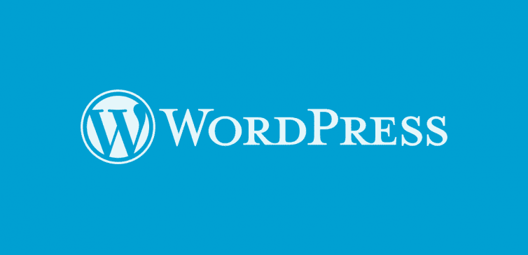WordPress Tablo Ekleme